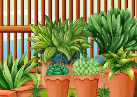 transpiration: Illustration of the pots with plants Illustration