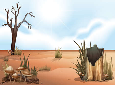 Illustration of a desert Vector