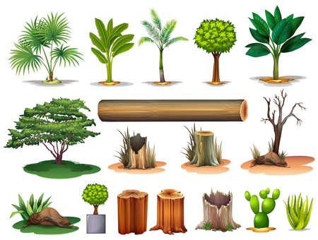 Illustration of the trees and stumps on a white background Vector