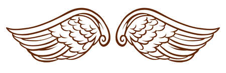 shield wings: Illustration of a simple sketch of an angels wings on a white background