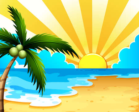 coconut tree: Illustration of a beautiful beach with a coconut tree Illustration
