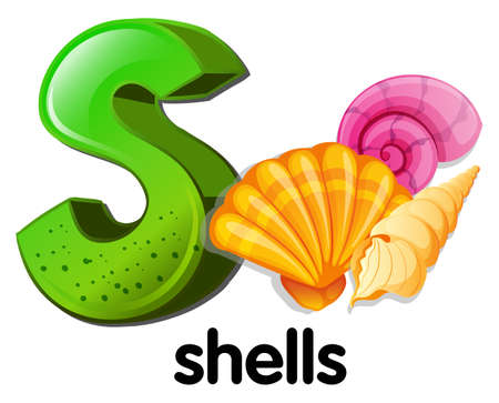 labelling: Illustration of a letter S for shells on a white background