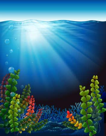interactions: Illustratie van de planten onder de zee