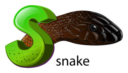 ectothermic: Illustration of a letter S for snake on a white background