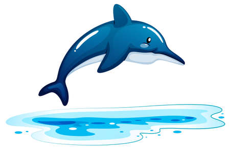 ectothermic: Illustration of a dolphin on a white background