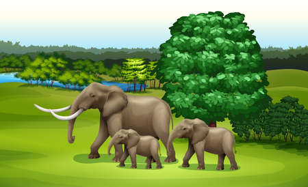 chordata: Illustration of the elephants and the green plants