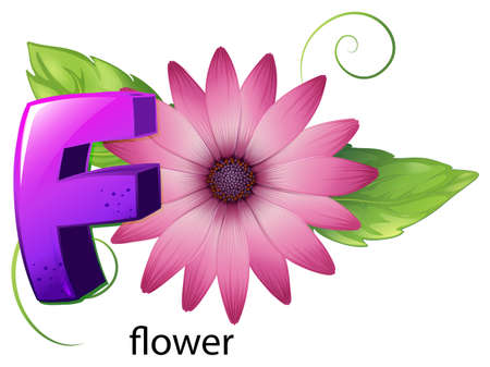 Illustration of a letter F for flower on a white background Vector