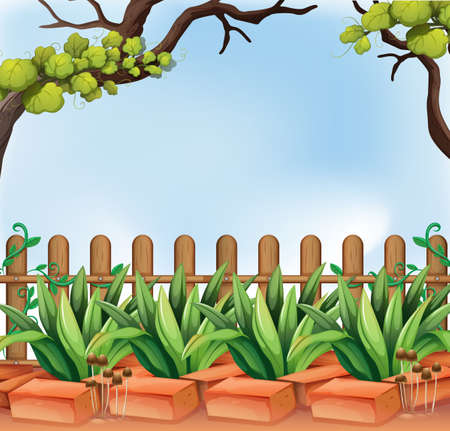 Illustration of a backyard with a fence