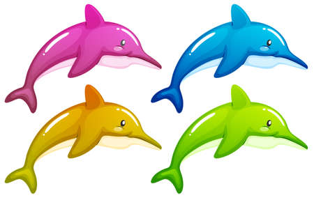 ectothermic: Illustration of the four dolphins on a white background