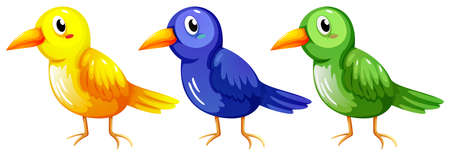 mobbing: Illustration of the three colourful birds on a white background