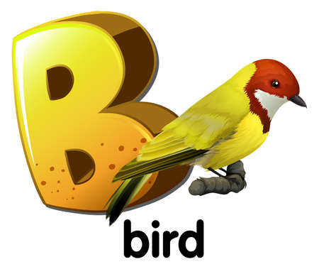 labelling: Illustration of a letter B for bird on a white background