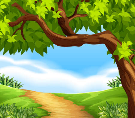 tree grass: Illustration of the beauty of nature