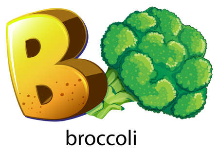 treelike: Illustration of a letter B for brocolli on a white background