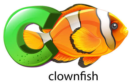 clownfish: Illustration of a letter C for clownfish on a white background