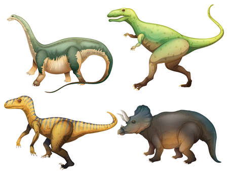 Illustration of the four dinosaurs on a white background  Vector
