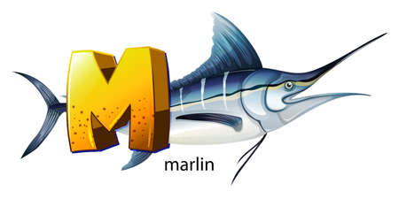 animalia: Illustration of a letter M for marlin on a white background  Illustration