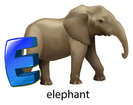 capitalized: Illustration of a letter E for elephant on a white background  Illustration
