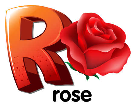 perennial: Illustration of a letter R for rose on a white background
