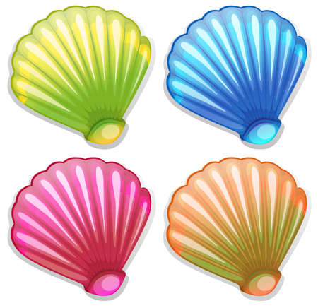 hard: Illustration of the colourful shells on a white background