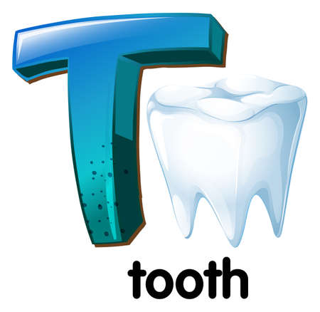hardness: Illustration of a letter T for tooth on a white background   Illustration
