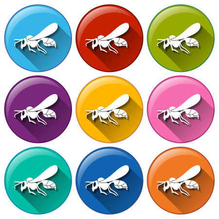 Illustration of the round buttons with insects on a white background