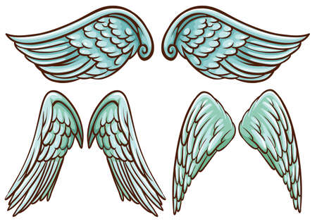 angel white: Illustration of different set of wings