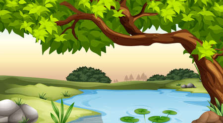 Illustration of a tree and a pond