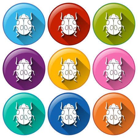 insecta: Illustration of the round icons with bugs on a white background Illustration