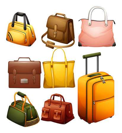 Illustration of the different bags on a white background Vector