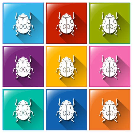 Illustration of the buttons with beetles on a white background