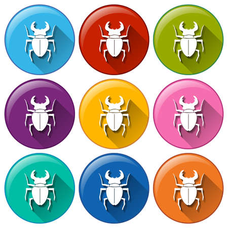insecta: Illustration of the round icons with scorpions on a white background