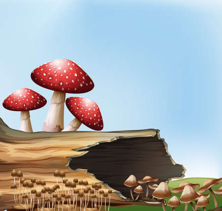 pores: Illustration of a mushroom above the stump Illustration