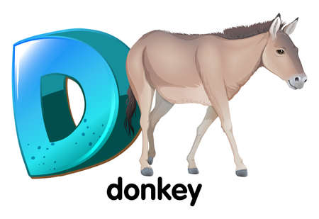 jack ass: Illustrazione di una lettera D per asino su sfondo bianco