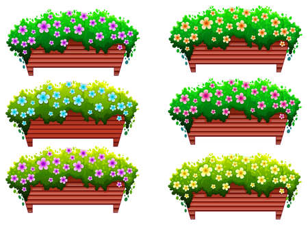 Illustration of the houseplants with flowers on a white background