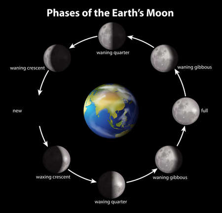 waxing gibbous: Phases of the Earths Moon on a black background Illustration