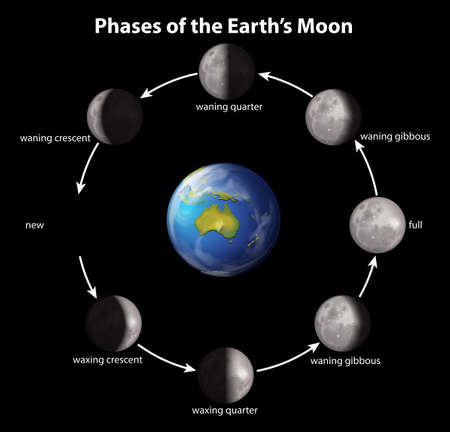 Phases of the Earth's moon on a black background Çizim