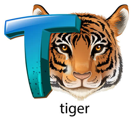 capitalized: A letter T for tiger on a white background