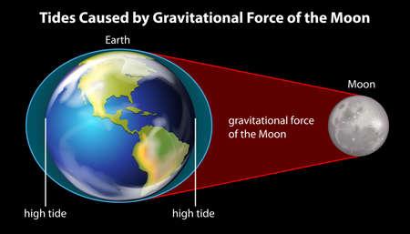 Tides causate dalla forza gravitazionale della luna su sfondo nero