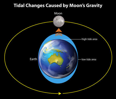 moons: Tidal changes caused by the moons gravity on a black background