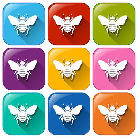 exoskeleton: Colourful rounded buttons with insects on a white background