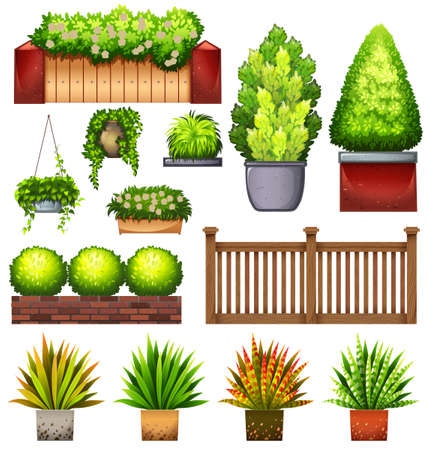 Set of different plants on a white background Vector
