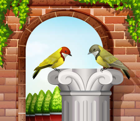 stonewall: Two birds near the stonewall