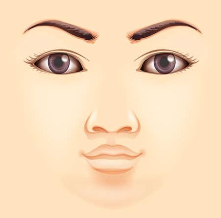 nostrils: Features of a human face
