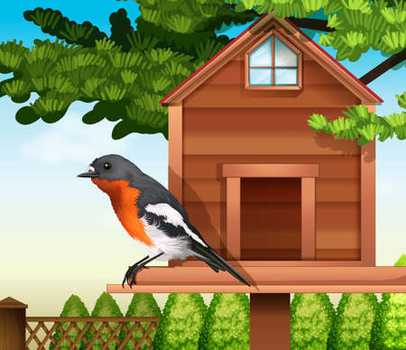flocking: A bird at the wooden pethouse
