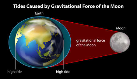gravitational: Poster explaining cause of tides by gravitational force
