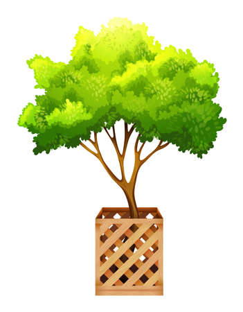 A decorative green plant on a white background Vector