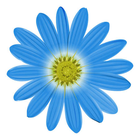 fusion: A blue flower on a white background Illustration