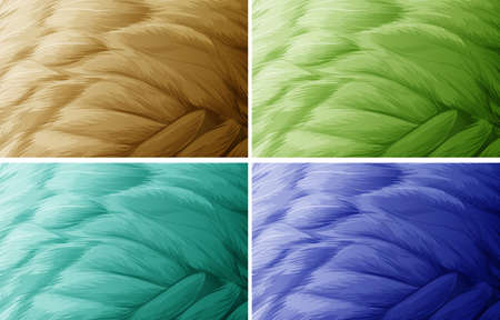 four texture: Illustration of four colors of feather texture Illustration