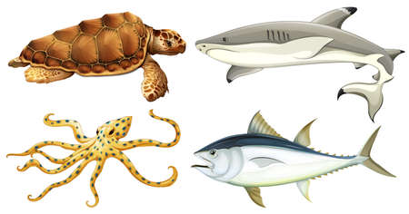 remnant: Different sea creatures on a white background Illustration