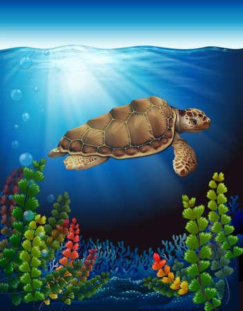 omnivorous: A sea turtle underwater near the seaweeds Illustration
